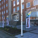 Din konstrunda börjar på Limhamn